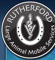 Rutherford Large Animal Services
